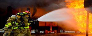 Buysrogge branddetectie
