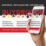 Alarm-inbraakbeveiliging door Buysrogge